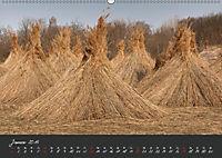 Natur erleben Seewinkel-Neusiedlersee (Wandkalender 2019 DIN A2 quer) - Produktdetailbild 1