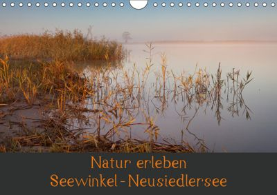 Natur erleben Seewinkel-Neusiedlersee (Wandkalender 2019 DIN A4 quer), Johann Schörkhuber