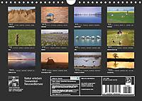 Natur erleben Seewinkel-Neusiedlersee (Wandkalender 2019 DIN A4 quer) - Produktdetailbild 13