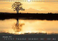 Natur erleben Seewinkel-Neusiedlersee (Wandkalender 2019 DIN A4 quer) - Produktdetailbild 12