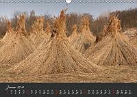 Natur erleben Seewinkel-Neusiedlersee (Wandkalender 2019 DIN A3 quer) - Produktdetailbild 1