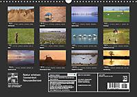 Natur erleben Seewinkel-Neusiedlersee (Wandkalender 2019 DIN A3 quer) - Produktdetailbild 13