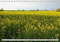 Natur-Paradies Mecklenburgische Schweiz (Tischkalender 2019 DIN A5 quer) - Produktdetailbild 5