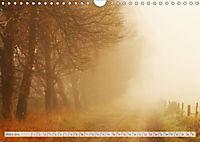 Natur-Paradies Mecklenburgische Schweiz (Wandkalender 2019 DIN A4 quer) - Produktdetailbild 3