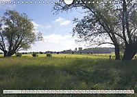 Natur-Paradies Mecklenburgische Schweiz (Wandkalender 2019 DIN A4 quer) - Produktdetailbild 6