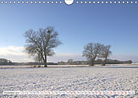 Natur-Paradies Mecklenburgische Schweiz (Wandkalender 2019 DIN A4 quer) - Produktdetailbild 12
