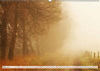 Natur-Paradies Mecklenburgische Schweiz (Wandkalender 2019 DIN A2 quer) - Produktdetailbild 3