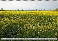 Natur-Paradies Mecklenburgische Schweiz (Wandkalender 2019 DIN A2 quer) - Produktdetailbild 5