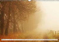 Natur-Paradies Mecklenburgische Schweiz (Wandkalender 2019 DIN A3 quer) - Produktdetailbild 3