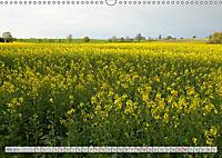 Natur-Paradies Mecklenburgische Schweiz (Wandkalender 2019 DIN A3 quer) - Produktdetailbild 5