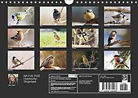 NATUR PUR Heimische Singvögel (Wandkalender 2019 DIN A4 quer) - Produktdetailbild 13
