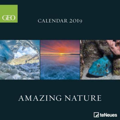 Nature 2019