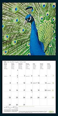 Nature 2019 - Produktdetailbild 1