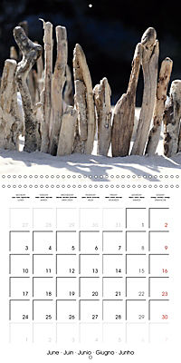 Nature and Art (Wall Calendar 2019 300 × 300 mm Square) - Produktdetailbild 6