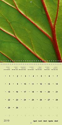Nature as artist (Wall Calendar 2019 300 × 300 mm Square) - Produktdetailbild 4