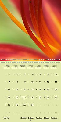 Nature as artist (Wall Calendar 2019 300 × 300 mm Square) - Produktdetailbild 10