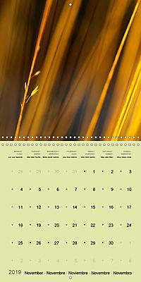 Nature as artist (Wall Calendar 2019 300 × 300 mm Square) - Produktdetailbild 11