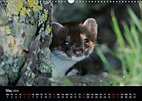 Nature at its best (Wall Calendar 2019 DIN A3 Landscape) - Produktdetailbild 5