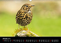Nature at its best (Wall Calendar 2019 DIN A3 Landscape) - Produktdetailbild 1