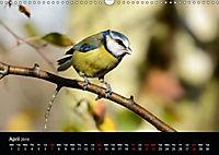 Nature at its best (Wall Calendar 2019 DIN A3 Landscape) - Produktdetailbild 4