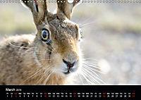 Nature at its best (Wall Calendar 2019 DIN A3 Landscape) - Produktdetailbild 3