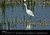 Nature at its best (Wall Calendar 2019 DIN A3 Landscape) - Produktdetailbild 6