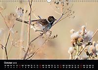Nature at its best (Wall Calendar 2019 DIN A3 Landscape) - Produktdetailbild 10