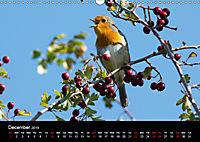 Nature at its best (Wall Calendar 2019 DIN A3 Landscape) - Produktdetailbild 12