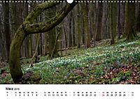 Naturerlebnis im Biosphärenreservat Rhön (Wandkalender 2019 DIN A3 quer) - Produktdetailbild 3