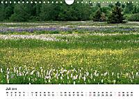 Naturerlebnis im Biosphärenreservat Rhön (Wandkalender 2019 DIN A4 quer) - Produktdetailbild 7