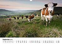 Naturerlebnis im Biosphärenreservat Rhön (Wandkalender 2019 DIN A3 quer) - Produktdetailbild 9