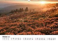 Naturerlebnis im Biosphärenreservat Rhön (Wandkalender 2019 DIN A3 quer) - Produktdetailbild 10