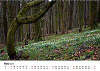 Naturerlebnis im Biosphärenreservat Rhön (Wandkalender 2019 DIN A2 quer) - Produktdetailbild 3