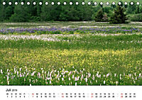 Naturerlebnis im Biosphärenreservat Rhön (Tischkalender 2019 DIN A5 quer) - Produktdetailbild 7