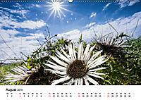 Naturerlebnis im Biosphärenreservat Rhön (Wandkalender 2019 DIN A2 quer) - Produktdetailbild 8