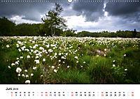Naturerlebnis im Biosphärenreservat Rhön (Wandkalender 2019 DIN A2 quer) - Produktdetailbild 6