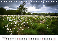 Naturerlebnis im Biosphärenreservat Rhön (Tischkalender 2019 DIN A5 quer) - Produktdetailbild 6
