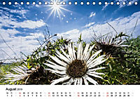 Naturerlebnis im Biosphärenreservat Rhön (Tischkalender 2019 DIN A5 quer) - Produktdetailbild 8