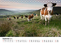 Naturerlebnis im Biosphärenreservat Rhön (Tischkalender 2019 DIN A5 quer) - Produktdetailbild 9
