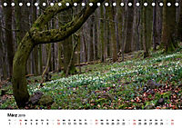 Naturerlebnis im Biosphärenreservat Rhön (Tischkalender 2019 DIN A5 quer) - Produktdetailbild 3