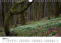 Naturerlebnis im Biosphärenreservat Rhön (Wandkalender 2019 DIN A4 quer) - Produktdetailbild 3
