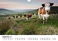 Naturerlebnis im Biosphärenreservat Rhön (Wandkalender 2019 DIN A4 quer) - Produktdetailbild 9