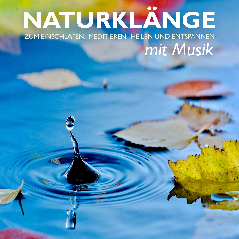 Musik Zum Zocken Download
