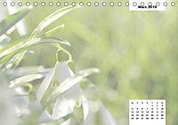 Naturmotive - Bastelkalender (Tischkalender 2019 DIN A5 quer) - Produktdetailbild 3