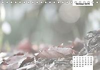 Naturmotive - Bastelkalender (Tischkalender 2019 DIN A5 quer) - Produktdetailbild 10