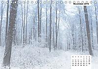Naturmotive - Bastelkalender (Tischkalender 2019 DIN A5 quer) - Produktdetailbild 11