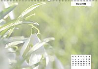 Naturmotive - Bastelkalender (Wandkalender 2019 DIN A2 quer) - Produktdetailbild 3