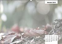Naturmotive - Bastelkalender (Wandkalender 2019 DIN A2 quer) - Produktdetailbild 10