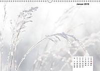 Naturmotive - Bastelkalender (Wandkalender 2019 DIN A3 quer) - Produktdetailbild 1