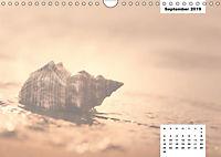 Naturmotive - Bastelkalender (Wandkalender 2019 DIN A4 quer) - Produktdetailbild 9